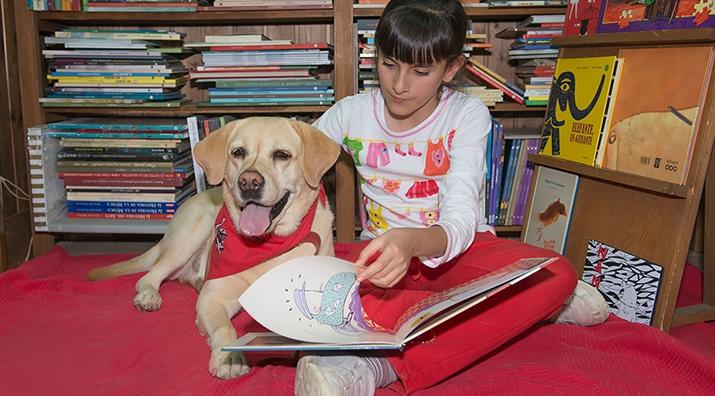 Perros y Letras - Nuestras peludas compañeras de trabajo